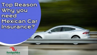 Photo of Top Reason Why you need Mexican Car Insurance?