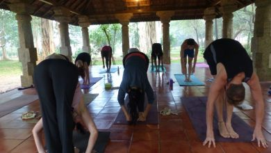 Photo of The Yoga Pro's Guide To Yoga Teacher Training