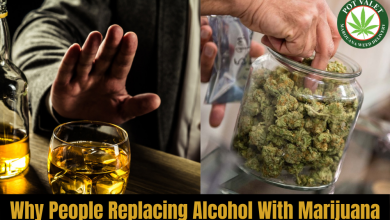 Photo of Why People Replacing Alcohol with Marijuana