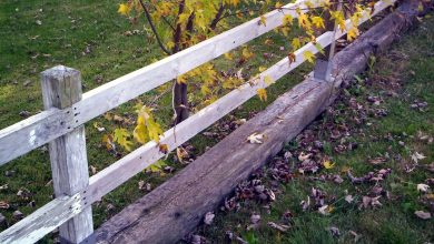 Photo of Choosing The Right Fence For Your Family