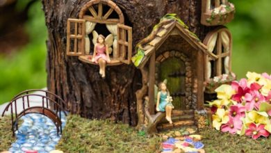 Photo of What are fairy garden supplies and how to work with them